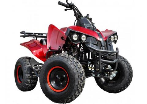ATV Model:Warrior NOU! Motor Fiabil 125cc(Roti 8 inch)